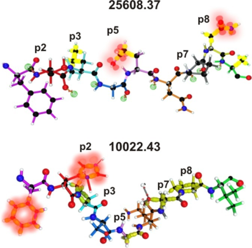 mHABP electron density. Side-chain atoms for p2, p3, p5, p7 and p8 in 25608.37 and 10022.43.The figure shows the side-chains for upwardly-oriented residues pointing to TCR-contacting residues. Polar amino acids present in p2, p5 and p8, displaying their non-bonding free electron pairs and π orbital surfaces shown in blurred red while σ orbitals for apolar ones present in p3 and p7 are shown by yellow surfaces. The φ angles (≤ -64°) in p7P (25608.37), p5P (32958.2), p7P (24254.31), p3P and p8P (10022.43) oriented this residue to make contact with the TCR.