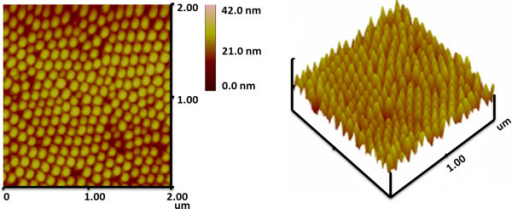 AFM images of Fe3O4dot array withD = 70 nm.