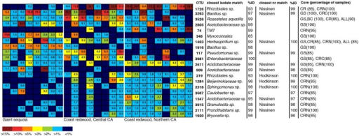 Heatmap showing the 20 most dominant OTUs in our dataset, along with best matches in the GenBank 16S rRNA database, an indication if the top GenBank nr match was a sequence from the Hodkinson et al. (2012) or Nissinen et al. (2012) studies, and their status as core OTUs across all samples (ALL), GS samples, CR samples, Coast redwood from Northern CA (CRN) or Coast redwood from Central CA (CRC). Within parenthesis, the percentage of samples above which the OTU is present. Color tones range from warm (red) to cool (blue) to indicate the highest to lowest relative abundance values.