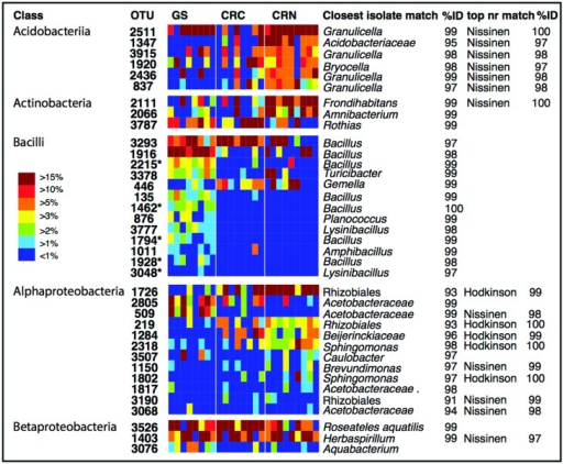 Individual OTU heatmaps for dominant and diverse classes, along with best matches in the GenBank 16S rRNA database and an indication when the top match to GenBank nr was to sequences from the Hodkinson et al. (2012) or Nissinen et al. (2012) studies. Here, colors represent the relative abundance of each OTU as a percentage of the total OTUs within each class. Color tones range from warm (red) to cool (blue) to indicate the highest to lowest relative abundance values. GS: Giant sequoia; CRN: Coast redwood from Northern CA; CRC: Coast redwood from Central CA. Five OTUs which were significantly more common in giant sequoia than in CR are marked with an asterisk.