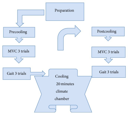 The procedure of experimental study: each subject performed 3 maximal voluntary contractions (MVCs) and 3 gait trails during the pre- and postcooling stages. The subjects performed precooling trials, followed by 20 min of cold water immersion at 10°C, followed by the trials immediately after cooling.