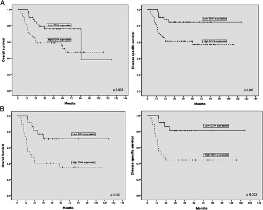 Kaplan–Meier curves of overall survival (OS) and disease specific survival (DSS) for patients with oral squamous cell carcinoma (OSCC) by SOX4 expression. a SOX4 expression significantly correlated with diminished OS and DSS in patients with OSCC (n = 85, P = 0.036 and P = 0.007, respectively). b SOX4 expression was associated with significantly worse OS and DSS in patients with OSCC, who were treated with chemotherapy and/or radiotherapy (n = 50, P = 0.007 and P = 0.003, respectively). Solid line: patients with low SOX4 expression; dotted line: patients with high SOX4 expression