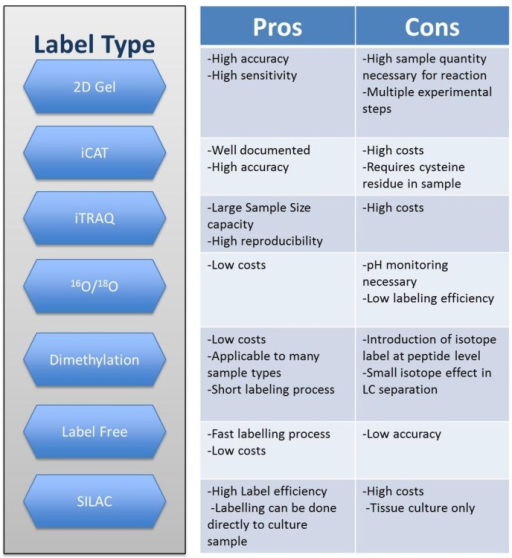 Types of protein labelling for analysis through mass sp | Open-i
