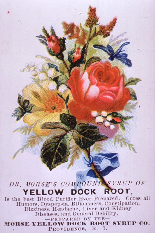<p>Advertising card for Yellow Dock Root Syrup, a blood purifier, which can be used to cure various ailments and general debility.  Visual motif:  Floral arrangement with dragonfly.</p>