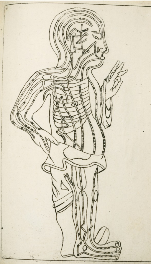 <p>The illustration shows double lines indicating channels of qi/ki flow in the body, sometimes called acupuncture meridians. These were misinterpreted in the West as evidence of East Asian ignorance of anatomy. Specimen medicinae Sinicae, pl. 4.</p>
