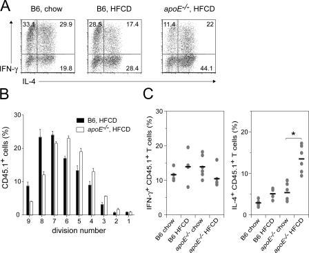 Dyslipidemia promotes Th2 cell development. (A) Splenic DCs were purified from chow diet– or HFCD-fed C57BL/6 (B6) and apoE−/− mice, followed by co-culture with naive GP61-80-specific CD4+ T cells in the presence of 10 nM GP61-80 peptide. On day 4, the proportion of IL-4– and IFN-γ–producing CD4+ T cells was determined by FACS. Numbers indicate the percentage of cells in each quadrant. (B and C) Naive GP61-80-specific CD4+ T cells (CD45.1+) were CFSE-labeled and transferred i.v. into the indicated mice 1 d before i.p. immunization with 40 μg GP61-80 peptide and 5 nmol CpG. (B) After 3 d, CFSE dilution of adoptively transferred cells was determined by FACS. The frequency of cells within each cycle was calculated after appropriate gating on the CFSE+ populations. (C) After 6 d, the production of IFN-γ and IL-4 by adoptively transferred cells was determined by FACS. Horizontal bars indicate mean values for each group (n = 5–6). Error bars represent the mean ± the SD.
