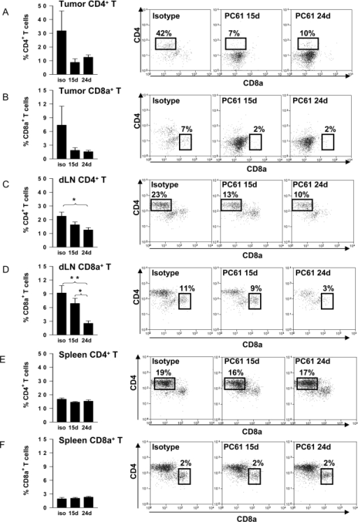 Infiltrating CD4+ T cells and CD8a+ T cells decrease in the tumor and dLN after treatment with PC61.C57BL/6 mice were challenged with tumor cells on day 0, and treated on day 17 by intratumoral delivery of saline. Tregs were depleted on either day 15 or day 24 by ip injection of PC61. Immune cells were isolated from the spleen, the cervical LN and the intracranial tumor at day 27 post-tumor implantation to determine the percentage of CD4+ T cells and CD8a+ T cells in each tissue. The percentage of tumor infiltrating immune cells that were CD4+ T cells (CD3ε+ CD4+ CD8a-) (A) and CD8a+ T cells (CD3ε+ CD4- CD8a+) (B); the percentage of immune cells in the draining lymph nodes that were CD4+ T cells (CD3ε+ CD4+ CD8a-) (C) and CD8a+ T cells (CD3ε+ CD4- CD8a+) (D); and the percentage of immune cells in the spleen that were CD4+ T cells (CD3ε+ CD4+ CD8a-) (E) and CD8a+ T cells (CD3ε+ CD4- CD8a+) (F) are shown in graphs (left). Representative dot plots for each treatment group are displayed on the right (gated for live leukocytes with FSC vs SSC and CD3ε+ T lymphocytes). The percentages of each immune cell population with respect to the total number of CD45+ cells in the tumors, draining lymph nodes (dLN) or spleen are indicated in representative dot plots. One Way ANOVA with Tukey's post test were used to calculate significant differences. (*p<0.05, **p<0.01).