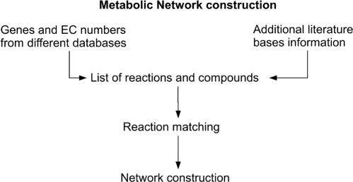 Processes for reconstruction of a metabolic network.