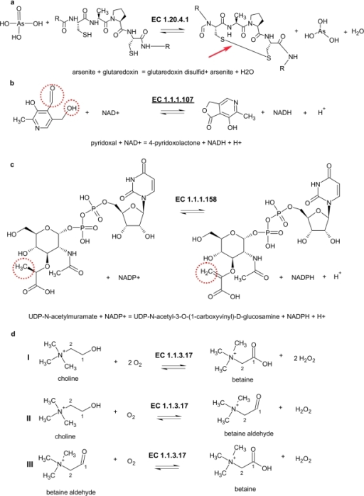 Examples for the different subsets.(a) The reverse direction of the reaction is shown. (b) Ambiguous, fits more than one sub-subclass. (c) Reaction is assigned to a wrong sub-subclass. (d) The enzyme catalysis two or more different types of reaction, where at least one does not meet the requirements of the assigned sub-subclass.