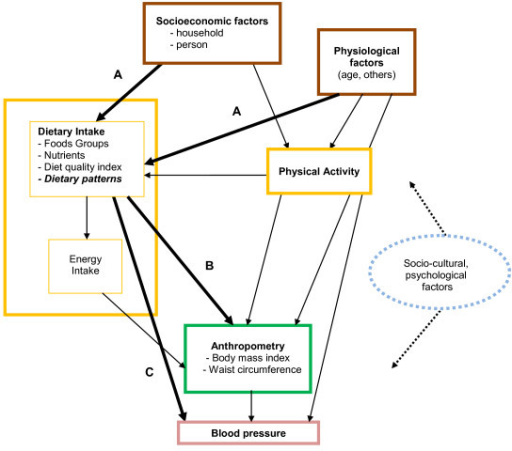 an analysis of the conceptual models and public policy Estimating medical costs for regulatory benefit-cost analysis: conceptual framework  of science and data policy a review and analysis of economic models.