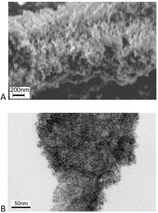 Images of the Pt-PEDOT composites. (a)SEM and (b)TEM.