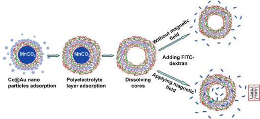 Layer-by-layer self-assembly and permeability test for microcapsules embedded with ferromagnetic gold-coated cobalt nanoparticles under an oscillating magnetic field. Reprinted with permission from Zonghuan L, Malcolm PD, Zhanhu G, et al. Magnestic switch of permeability for polyelectrolyte microcapsules embedded with nanoparticles. Langmuir. 2005;21:2042–2050. Copyright © 2005. American Chemical Society.109Abbreviations: Co@Au, ferromagnetic gold-coated cobalt; FITC, fluorescein isothiocyanate; MnCO3, manganese carbonate.