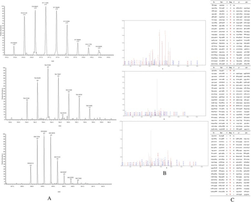 MS/MS map of peptide with MW of 7764.29 Da. A. The enlarged picture of peptide with MW of 7764.29 Da. B. The b and y ions spectra are used to identify the peptide with MW of 7764.29 Da. C. The sequence of the peptide with MW of 7764.29 Da.