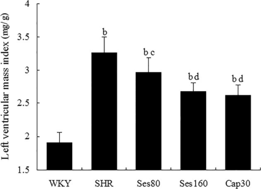 Effect of sesamin on left ventricular mass index (LVMI) in rats.After 12 weeks of supplementation with sesamin or captopril, rats were anaesthetized with pentobarbital sodium and sacrificed, followed by dissection of left ventricles. LVMI is calculated as the ratio of left ventricular weight to body weight (mg/g). Data were presented as mean±SD (n = 7). b P <0.01 vs. WKY group; c P <0.05, d P <0.01 vs. SHR group.