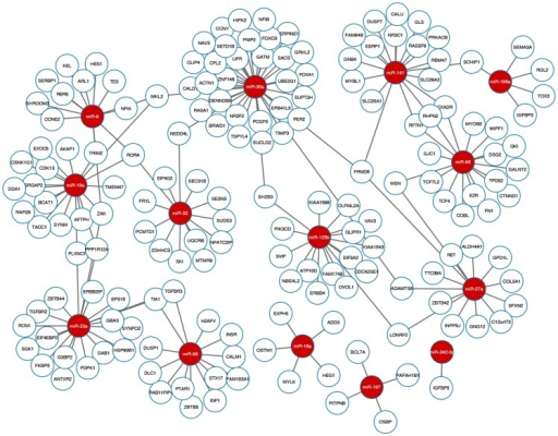 Highly-confident novel interactions in the EMT, MCC, and BR51 datasets.Red nodes are miRNAs and white nodes are mRNAs. The interactions are predicted by both the ensemble method, Pearson+IDA+Lasso, and TargetScan.