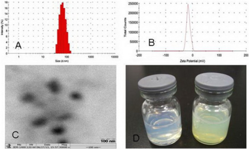 Size (A), zeta potential (B), TEM (C), and colloidal solution (D) of Qu-PMs.
