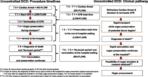 Timelines and clinical pathway in the process of uncontrolled donation after circulatory death (DCD). CPR cardiopulmonary resuscitation