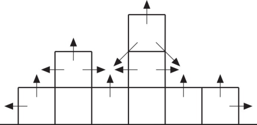 Cross-section through a hypothetical model reef.Upward-pointing arrows indicate vertical growth directions, horizontal and diagonal arrows indicate neighbour growth directions.