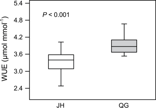 Comparison of water use efficiencies (WUE) of M. lutarioriparius between two sites. The empty boxplot shows the mean value of WUE in Jiangxia of Hubei Province (JH) and the solid boxplot the mean value of WUE in Qingyang of Gansu Province (QG). The t test between the WUE values in JH and QG is examined and the result shows that the WUE value of M. lutarioriparius is significantly higher in QG than in JH (P <0.001).