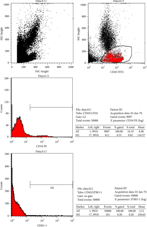 Representative picture of flow cytometric analysis. Mononuclear CD45−/CD34−/CD271+/STRO-1+ cells defined as bone marrow mesenchymal stem cell and their enumerated percentage and absolute count. Bone marrow hematopoietic stem cells determined in CD45+/CD34+ mononuclear cell population and their enumerated percentage and absolute count.