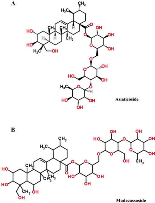 Chemical structure of (A) asiaticoside and (B) madecassoside.