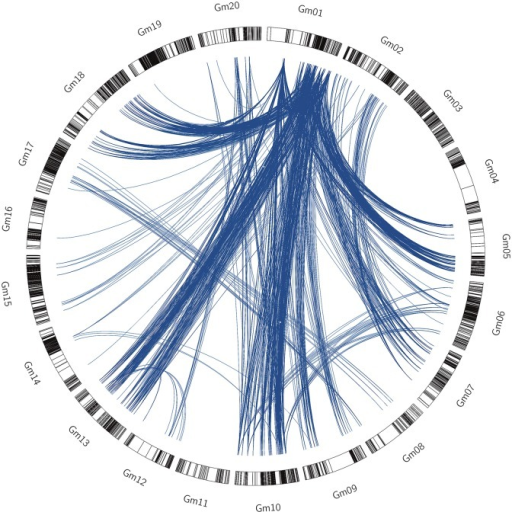 The circle represented the whole soybean genome.Blue lines represented epistatic interactions between two markers across eleven environment, the black lines represented epistatic interactions between two markers across twelve environment.