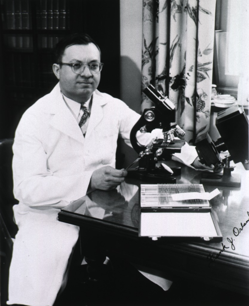 <p>Three quarter length, seated at table containing microscope and slides, holding a slide in one hand.</p>