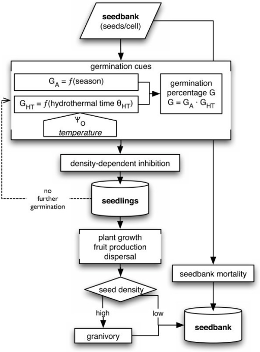 Flow Chart Of The Seed Bank Module Ga Activity Inv Open I
