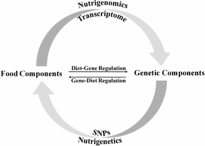 Distinctions between nutrigenomics and nutrigenetics. The investigation of how food components modulate changes in gene expression profile or transcriptome is defined as nutrigenomics. One the other hand, nutrigenetics is defined as the study of how genetic variations such as single nucleotide polymorphism (SNP) among individuals affect their response to specific food components.