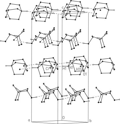 A view of molecular packing showing chains formed along a and b directions. The hydrogen bonds are shown as dashed lines. The H atoms not involved in any interaction are omitted for clarity.