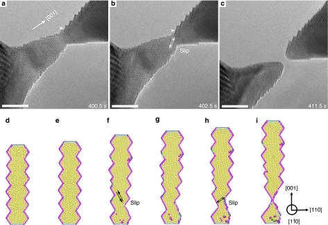 Necking of the nanocrystal.The figure depicts the same nanocrystal shown in Figure 1 (see also Supplementary Movie 3). (a, b) The experimental observations of the cooperative slip between two conjugate {111} planes, leading to the enlargement of the surface steps indicated by the arrowheads. A 10% elastic strain is estimated from the change of the (002) lattice plane spacing. (c) Final fracture of the nanocrystal. The scale bar in each figure represents 3 nm. (d–i) A profile view of the MD simulations of the necking process induced by slip. Atoms are coloured according to the coordination numbers (see Supplementary Materials for details).