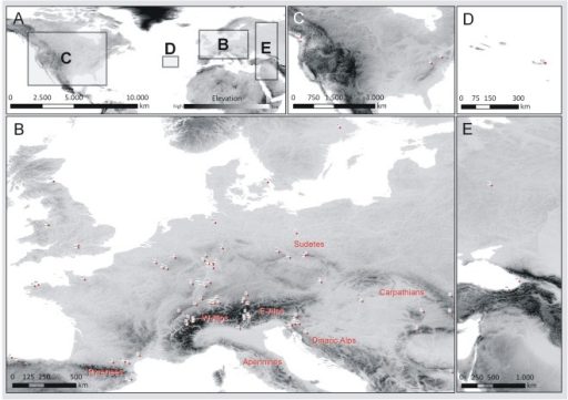 Distribution map of sampling sites.Overview map (A) of sampling sites and detailed depiction of European (B), transatlantic North American (C) and Azorean (D) as well as East European populations (E). Further information can be retrieved from Table 1.