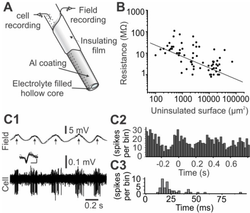 Coated glass microprobes enable dual electrical recordings.A) Schematic representation of a multimodal microprobe tip. B) Measured resistance as a function of the uninsulated surface. C) Simultaneous recording of field potential oscillations and single unit achieved with the microprobes. Spikes were computed in a time histogram (C1). Inset: overlay of 10 successive spikes (vertical scale bar: 0.1 mV, horizontal scale bar: 1 ms) (C2) according to time of occurrence relative to field maxima (arrows in c1; n = 15) and into an interspike interval histograms (C3).