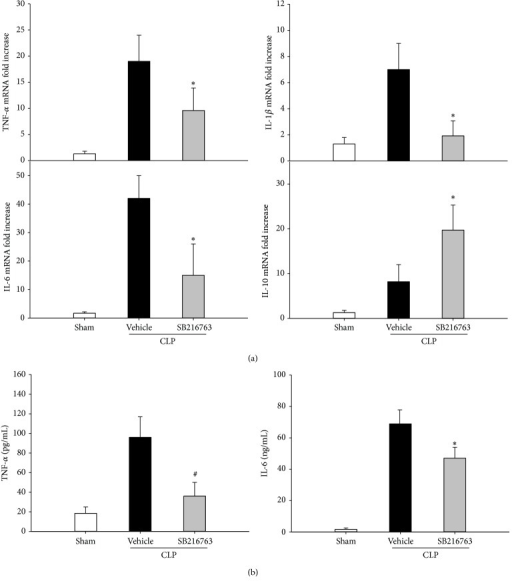 GSK-3β inhibition attenuates the inflammatory cytokine production following CLP. (a) GSK-3β inhibition altered mRNA expression of TNF-α, IL-6, IL-1β, and IL-10 in the liver of septic mice. (b) Serum TNF-α and IL-6 levels were assessed by ELISA. Data are shown as mean ± SD. n = 6 per group. *P < 0.05, #P < 0.01 compared with vehicle-treated group.