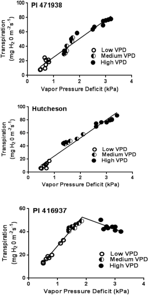 Transpiration rate (TR) response of (a) Hutcheson (b) PI 471938 and (c) PI 416938 to low, medium and high vapor pressure deficit (VPD) conditions from experiments 1 and 2 (4 replicates in each experiment at each VPD level).X-axis represents VPD levels, and the Y-axis represents corresponding transpiration rates. Closed, half closed and open circles are TR values under low, medium and high VPD conditions, respectively. Data points are the individual plant TRs exposed to various VPDs. The regressions in (a) and (b) are single linear relationships, and the regression in (c) is a two-segmental nonlinear relationship. More details are shown in S2 Table.