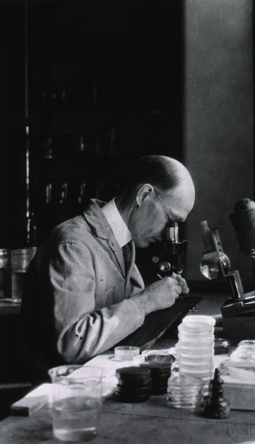 <p>Half-length, seated in laboratory, looking into microscope.</p>