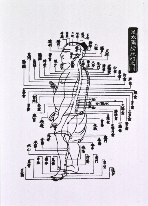 <p>Human figure shown full length in left profile with acupuncture points indicated.</p>