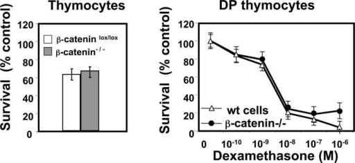 Absence of β-catenin does not affect spontaneous or glucocorticoid-induced death of thymocytes. (a) Percentage of surviving thymocytes gated on CD45.1+ (WT donor) or CD45.2+ (β-catenin−/− donor) derived from mixed BM chimeras after 12 h of culture at 37°C. The percentage of surviving cells is normalized to control cells maintained at 4°C. Data represent mean ± SD of five experiments. (b) Glucocorticoid-induced cell death in WT (CD45.1+) and β-catenin−/− (CD45.2+) CD4+ CD8+ DP thymocytes after 12 h of culture at 37°C. Data are normalized to untreated controls and represent mean ± SD from five individual experiments.