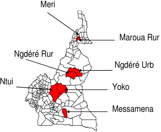 Districts that conducted mass yellow fever vaccination campaigns in Cameroon in November 2006. Ngdéré, Ngaoundéré; Rur, Rural; Urb, Urban.