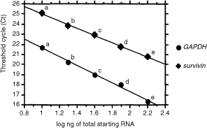 Standard curves for survivin and GAPDH. The plots represent the log of the input amount (log ng of total starting RNA of EC-GI-10; a: 160 ng, b: 80 ng, c: 40 ng, d: 20 ng, e: 10 ng) as the x-axis and threshold cycle (Ct) as the y-axis for survivin and GAPDH.