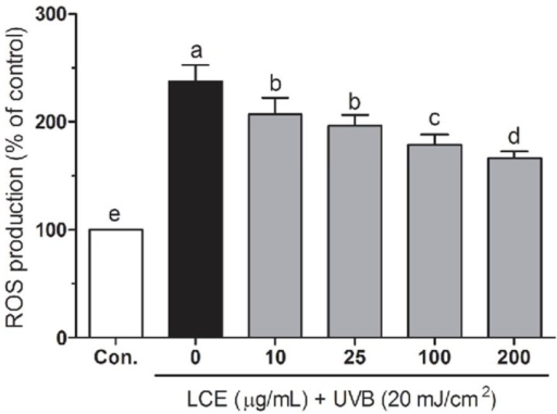 Effects of Lindera coreana leaf ethanol extracts (LCE) on intracellular reactive oxygen species (ROS) levels in UVB (20 mJ/cm2) irradiated HaCaT keratinocytes. Data are representative of three independent experiments as mean ± SD. a~e Mean values with different letters on the bars are significantly different (p < 0.05) according to Duncan's multiple range test