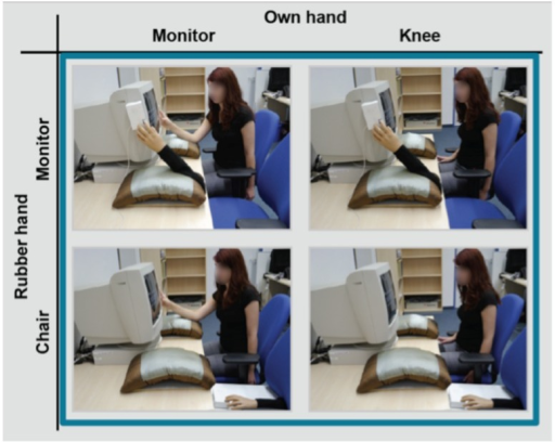 Experimental design of the joint Simon task of Experiment 3. The same hand position manipulation was used as in Experiment 2, but in Experiment 3, the left human co-actor was replaced by a rubber hand positioned on a response button, which pulled down the index finger of the rubber hand when the square appeared. The figure shows the hands monitor and the hands knee condition for the participant's own hand and hands monitor and the hands chair condition for the rubber hand.
