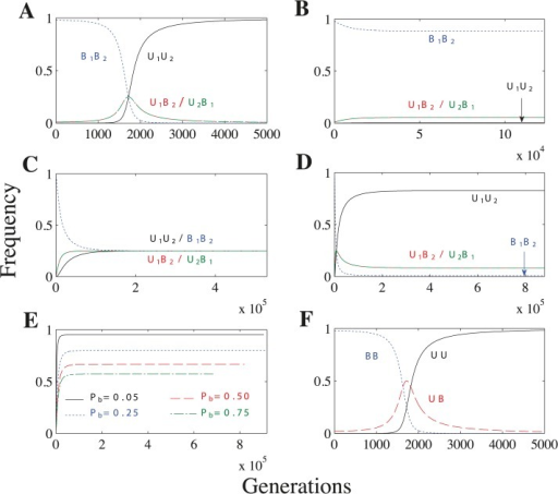Recombination and no mating types scenarios.Parameters: n = 20, μ = 10−4, ch = 0.2. (A) As the U allele initially spreads (generations 0–1700), the U1B2/U2B1 genotypes increase in frequency. But, because U1B2 and U2B1 cells lead to B1B2 cells through meiosis and random mating, the U1U2 genotype soon takes over and uniparental inheritance becomes fixed. Additional parameters: Pr = 0.5 and concave fitness. (B) Biparental inheritance dominates when U × U matings are biparental and fitness is concave. (C) Uniparental inheritance invades to its maximum value (0.5) when U × U matings are biparental and fitness is linear or convex. (The frequency of uniparental inheritance is the sum of U1U2 and U2B1.) Additional parameters: linear fitness. (D)U × U matings have a mixture of uniparental and biparental inheritance. Unlike in B, U1U2 no longer becomes fixed because some U × U matings now have biparental inheritance and further increasing U1U2 would only increase the overall level of biparental inheritance. Additional parameters: Pb = 0.1 and linear fitness. (E) Lines represent the frequency of uniparental inheritance in separate simulations with linear fitness and varying probabilities of biparental inheritance (Pb) when U × U matings have a mixture of uniparental and biparental inheritance. As Pb increases, U × U matings are more likely to lead to biparental inheritance, which decreases the frequency of uniparental inheritance at equilibrium. (F) No mating types scenario under concave fitness. F is identical to A except that the frequency of UB in F is the sum of the U1B2 and U2B1 freqencies in A.