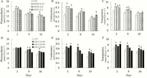 Effects of ABA and Ethylene biosynthesis inhibitors on photosynthesis, conductance, and transpiration rates at pre-anthesis.Photosynthesis rate (A, D), Conductance (B, E), and Transpiration rate (C, F) of UTC and NDGA treated plants (A, B, C) or UTC and AIB treated plants (D, E, F) 2, 9, and 16 d after spray at pre-anthesis stage. Values are Mean ± SE (n = 6). * indicating significance at P ≤ 0.05.