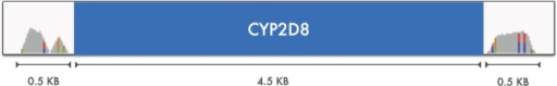 The coverage of the reads mappable to the CYP2D6 and/or CYP2D7 genes is depicted in grey on the flanking regions of CYP2D8 (blue strip). Only two small 0.5 KB regions on the sides accept CYP2D6 and/or CYP2D7 reads