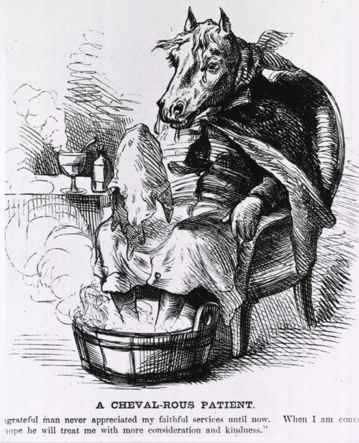 <p>A cheval-rous patient [cartoon on the horse plague of 1872, showing a horse sitting in a chair].</p>