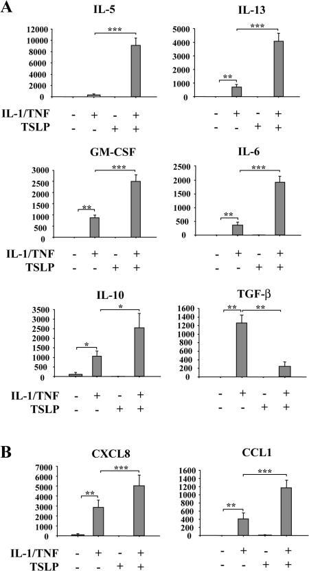 TSLP-stimulated secretion of cytokines and chemokines by MCs. Cytokine (A) and chemokine (B) secretion by MCs (105 cells/ml) stimulated for 24 h with 10 ng/ml IL-1β/TNF or/and TSLP was assessed by ELISA. Mean ± SEM (n = 11).