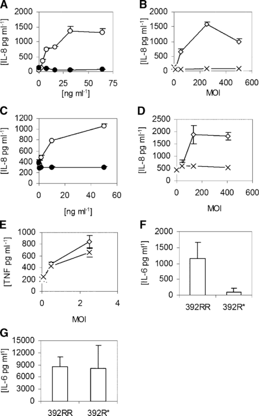 FliC stimulation of cytokine production. (A–E) Cells were stimulated with LPS (•), purified S. typhimurium FliC (○), heat-killed wild-type L. pneumophila (⋄), or FlaA− (FliC mutant) L. pneumophila (×). (A and B) A549 cells; (C and D) Calu-3 cells; and (E) whole blood. (F–G) PBMCs were harvested from individuals with homozygous wild-type TLR5 (392RR; n = 6) or stop codon TLR5 heterozygotes (392R*; n = 4). Cells were stimulated with FliC at 30 ng/ml−1 (F) or LPS at 10 ng/ml−1 (G). (A–G) Cells were stimulated for 18 h and supernatants were assayed for cytokine production by ELISA. Data are representative of experiments performed at least twice in triplicate with standard deviations indicated. (F and G) The mean level and standard deviation of IL-6 were derived from averaging the responses of different individual's cells stimulated in triplicate.