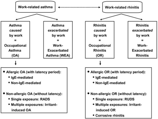 Parallel classification of occupational rhinitis and asthma. The Table classifies occupational rhinitis according to the most recent classification of occupational asthma. RADS, Reactive Airways Dysfunction Syndrome; RUDS, Reactive Upper Airways Dysfunction Syndrome).