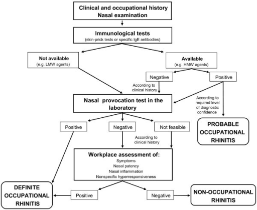 Diagnostic algorithm. The figure illustrates the sequential steps for diagnosing occupational rhinitis.